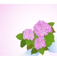 Background with hydrangea decorative background vector image vector image