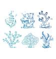 bright doodle seaweeds underwater plants vector image vector image