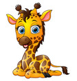 cartoon giraffe sitting vector image