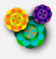 colorful kaleidoscope flowers vector image vector image