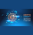 crypto currency bitcoin on blue background digital vector image