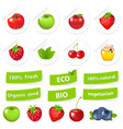 eco set organic food vector image vector image