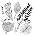flowers set hand drawn with leaves and flowers vector image vector image