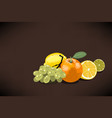fresh fruits for squeezed juice with an orange vector image vector image