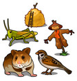 grasshopper mouse sparrow scarecrow and haystack vector image vector image