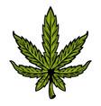 leaf of marijuana vector image
