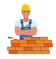 professional builder with arms vector image