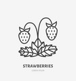 strawberries flat line icon forest berry sign vector image vector image