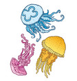 three beautiful decorative different jellyfish vector image vector image