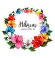 tropical leaf hibiscus flower frame banner vector image vector image