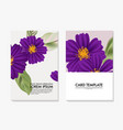 watercolor cosmos flower botanical wild field vector image vector image