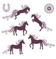 collection of of horses vector image