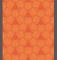 geometric pattern in the form of a hexagon vector image vector image