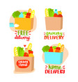 grocery delivery concept set vector image vector image