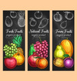 sketch banners of fresh exotic fruits vector image vector image