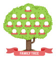 genealogy family tree son daughter father mother vector image vector image