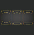 vertical frames and borders set decorativ gold vector image