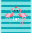 cute flamingo love background vector image vector image