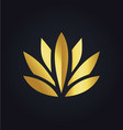 lotus flower beauty color gold logo vector image vector image