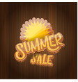 summer sale label or tag on wooden board vector image