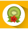tropical kiwi fruit and beautiful red flowers vector image