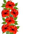 Background with a bunch of red flowers vector image vector image