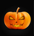 bright orange realistic halloween pumpkin vector image