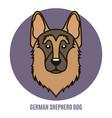 portrait of german shepherd dog vector image vector image