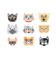 set cute cartoon cats heads colorful character vector image