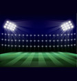 soccer field concept background realistic style vector image