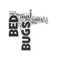 Bed bugs pictures text word cloud concept