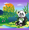 cartoon panda in bamboo forest vector image