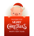 cute pig in santa hat stands behind red signboard vector image vector image