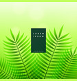 green leaves eco nature background vector image vector image