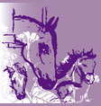 horses background 2 vector image