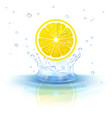 lemon in water vector image