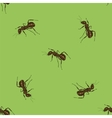 Seamless Animal Pattern Ant Isolated vector image