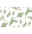 seamless pattern of pine christmas spruce vector image