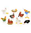 cute hens and roosters flat icon set vector image vector image