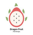 dragon fruit flat icon vector image