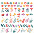 flowers and leaves set botanical collection in vector image