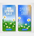 set vertical web banners for spring sales vector image