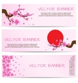 Spring Banner with Blooming Sakura vector image