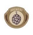 vintage beer label with hop design elements for vector image