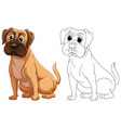animal outline for cute dog vector image vector image