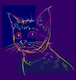 cat -4 vector image vector image
