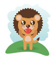 cute lion animal wildlife vector image vector image