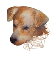 Isolated Stylized Portrait of a Dog