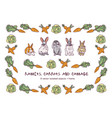 rabbits carrots cabbage and border isolate objects vector image vector image