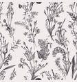 seamless botanical pattern black and white vector image vector image